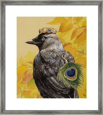 Jackdaw Triumphant Framed Print by Tracie Thompson