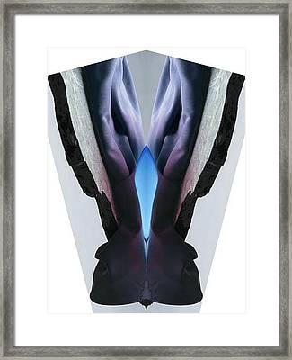 Jacket Framed Print