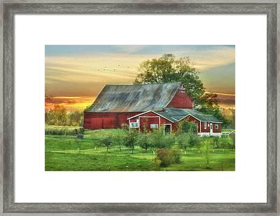Jackson Orchard Framed Print by Lori Deiter
