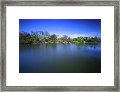 Jackson Park Framed Print by Jonah  Anderson
