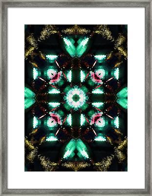 Jade Reflections - 3 Framed Print by Shawna Rowe
