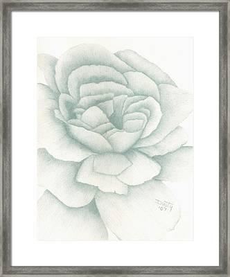 Jade Rose Framed Print by Dusty Reed