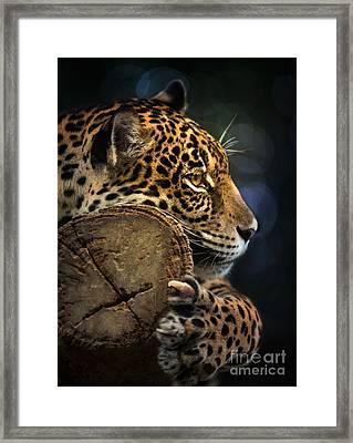 Jaguar  Framed Print by Anek Suwannaphoom