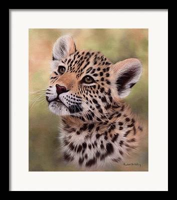 Jaguar Art Framed Prints