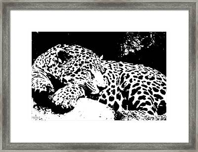 Jaguar In Reverse Framed Print by Teresa Blanton