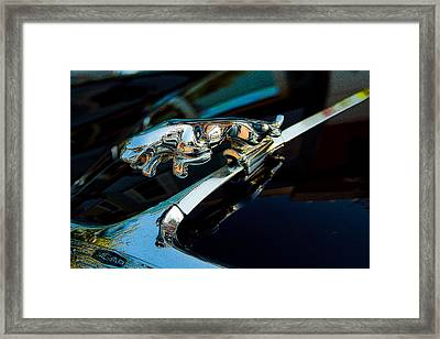 Jaguar Jaguar Framed Print