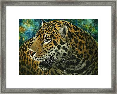 Jaguar Framed Print by Sandra LaFaut