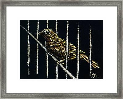 Jail Break Framed Print