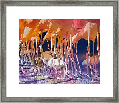 Jailbirds Framed Print by Kris Parins