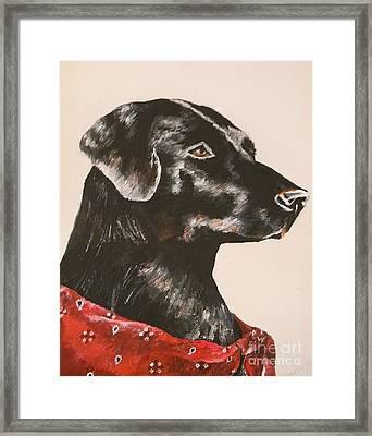 Jake Framed Print by Lisa Bentley