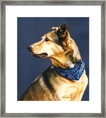 Jake Framed Print by Melodye Whitaker