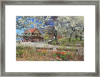 Jamaica Pond Boston In Spring Framed Print