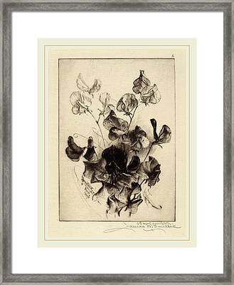 James David Smillie, Sweet Peas, American Framed Print by Litz Collection