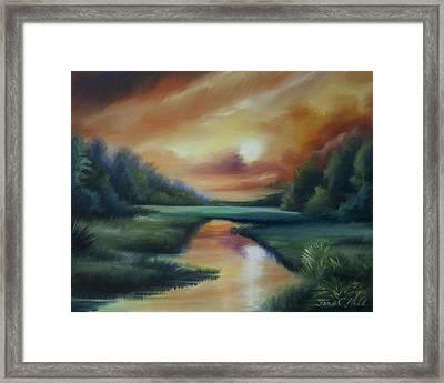 James Island Marsh Framed Print by James Christopher Hill
