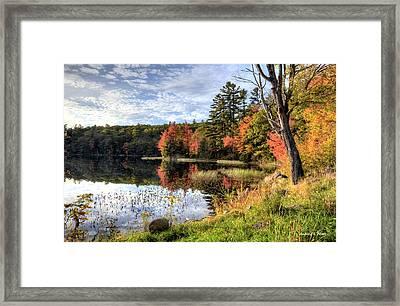 Jamie's Pond Framed Print
