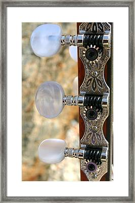 Framed Print featuring the photograph Jammed Pearl by Marie Neder
