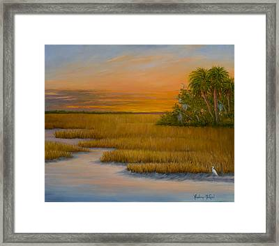 January Afternoon Framed Print by Audrey McLeod