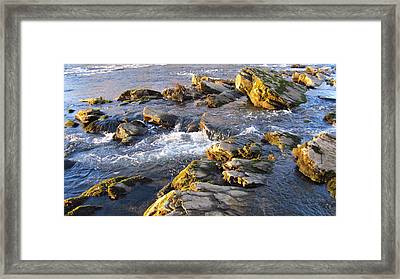 January Afternoon On The Watauga Framed Print