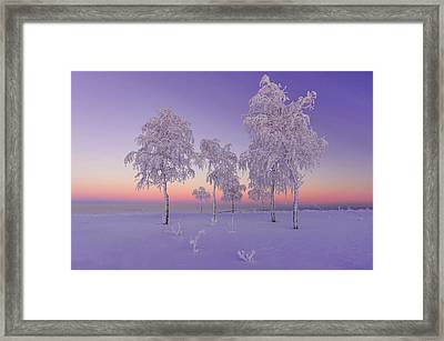 January Evening Framed Print