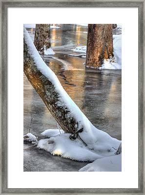 January Freeze Framed Print by Michael Eingle