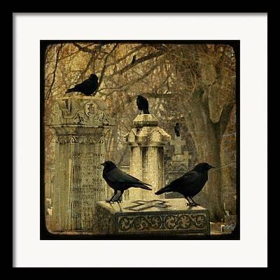 Birds In Graveyard Framed Prints