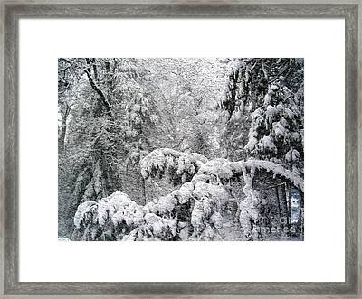 Framed Print featuring the photograph January by Irina Hays