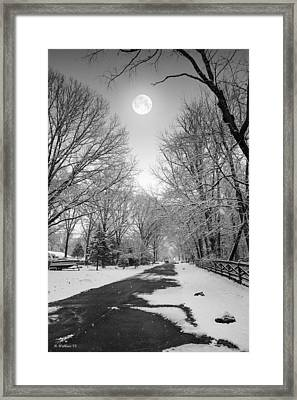 January Moon Framed Print by Brian Wallace