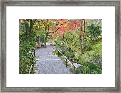 Japan, Kyoto, Arashiyama, Sagano Framed Print by Rob Tilley