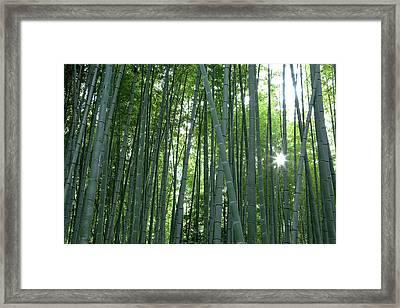 Japan, Kyoto Sunburst Framed Print by Jaynes Gallery