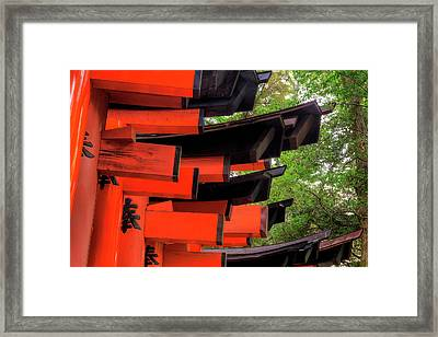 Japan, Kyoto View Of Torii Gates Framed Print by Jaynes Gallery