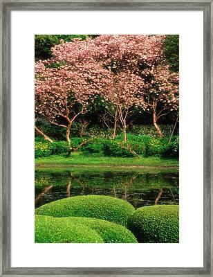 Japan, Tokyo Reflecting Pond, Imperial Framed Print by Jaynes Gallery