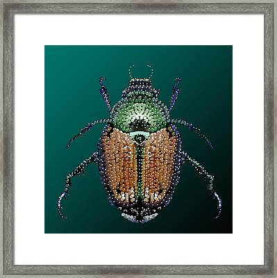 Japanese Beetle Bedazzled II Framed Print by R  Allen Swezey