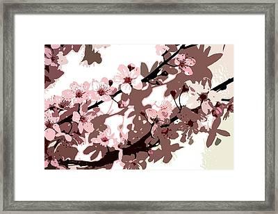 Japanese Blossom Framed Print