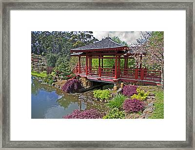 Japanese Bridge At Emu Valley Framed Print by Tony Crehan