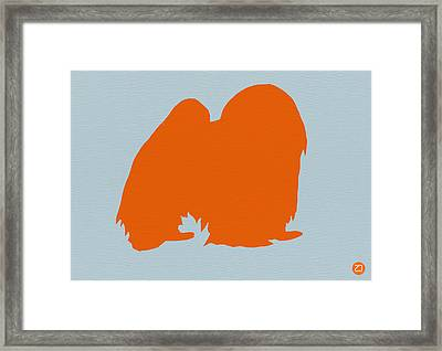 Japanese Chin Orange Framed Print by Naxart Studio