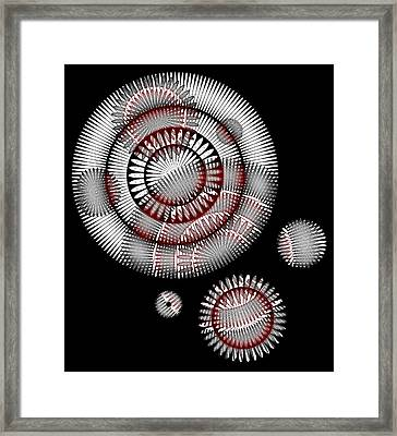 Japanese Chrysanthemum Framed Print by Frank Tschakert