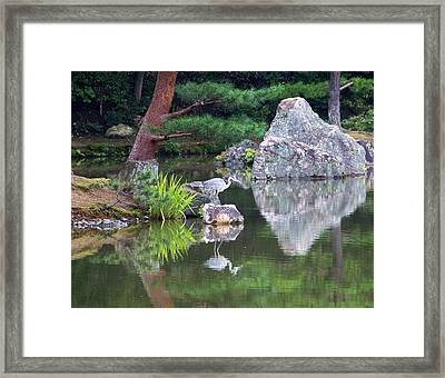 Japanese Crane Upon The Water Framed Print by Laura Palmer