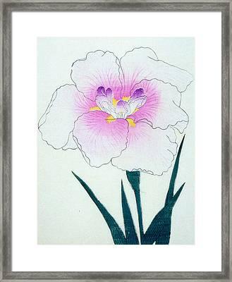 Japanese Flower Framed Print by Japanese School