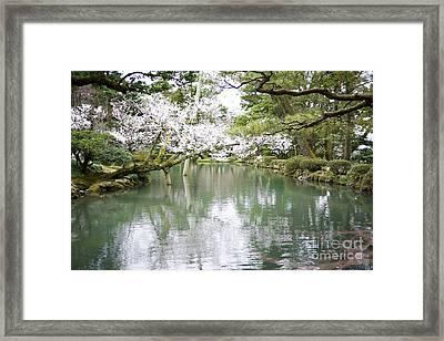 Japanese Garden  Framed Print by Moshe Torgovitsky