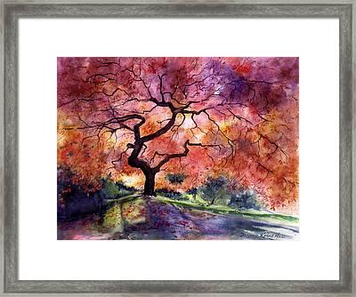 Japanese Garden Framed Print By Renae Hill