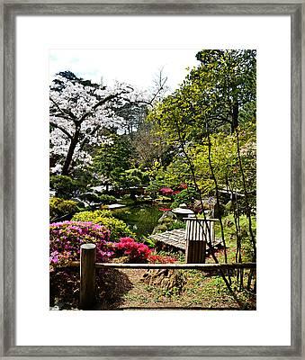 Japanese Gardens Framed Print by Holly Blunkall