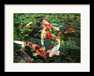 Carp Framed Prints