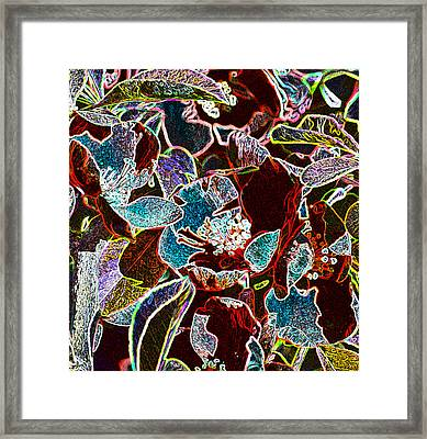 Japanese Quince In Abstract Framed Print