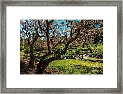 Japanese Spring Garden Framed Print