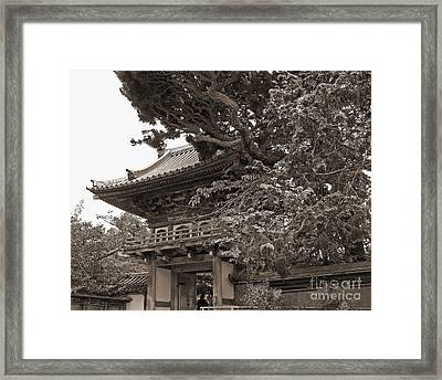 Japanese Tea Garden Pagoda In Sepia. Golden Gate Park Framed Print by Connie Fox