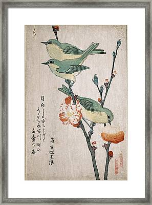 Japanese White-eyes Perching On A Branch Of Peach Tree Framed Print by Kubo Shunman