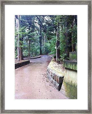 Japanese Winding Road Framed Print