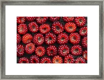 Japanese Wineberry Pattern Framed Print