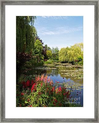 Jardin D'eau Framed Print by Alex Cassels