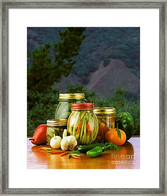 Jarred Beans And Pickles Framed Print by Craig Lovell